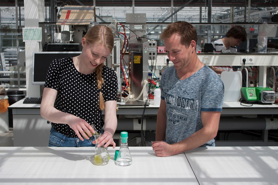 KarlijnSibbel---collaboration-with-AlgaePARC-at-Wageningen-University---Jeroen-de-Vree